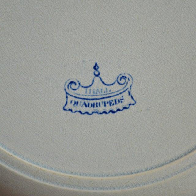 Quadrupeds Transferware Plate, John Hall Staffordshire - Image 10 of 10