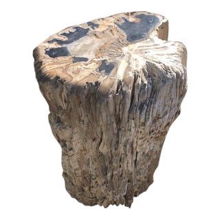 Petrified Wood Specimen Side Table For Sale