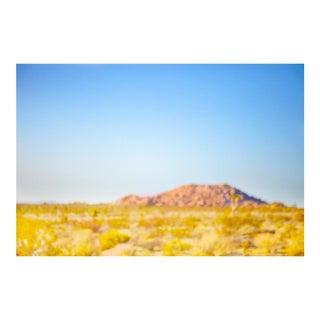 Desert Meadow Photograph