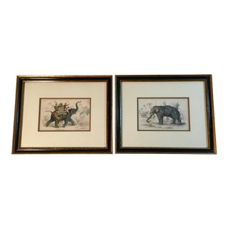 Antique Framed Natural History Elephant Prints - A Pair