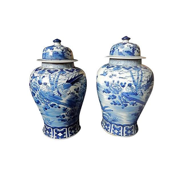 Blue & White Lidded Ginger jars, Pair - Image 1 of 6