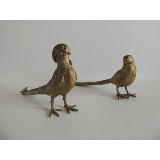 Pair of Brass-Plated Standing Male and Female Pheasants For Sale In Miami - Image 6 of 6