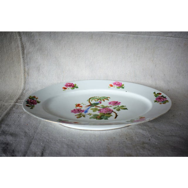 Beautiful large platter painted with a parrot, palm branch and roses made by Victoria China, in Czechoslovakia. This is a...