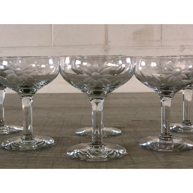 Mid-Century Modern Vintage 1950s Floral Etched Glass Coupes, Set of 6 For Sale - Image 3 of 7