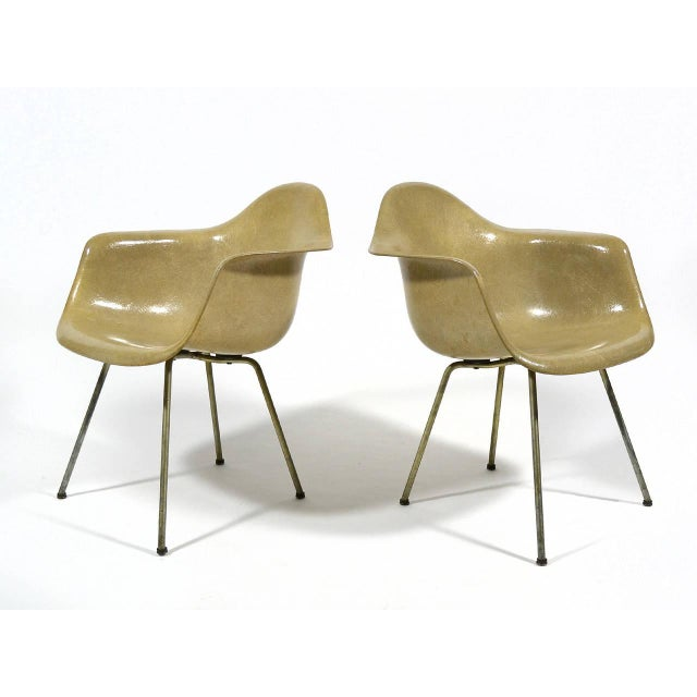 Pair of Eames SAX Armchairs by Zenith Plastics for Herman Miller - Image 3 of 11