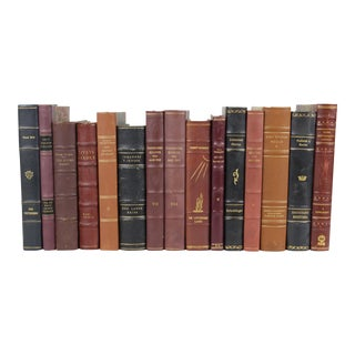 Leather-Bound Books - Set of 15