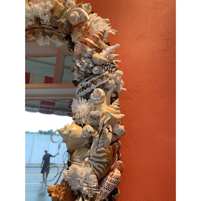 Oval Seashell Encrusted Wall Mirror For Sale In West Palm - Image 6 of 10