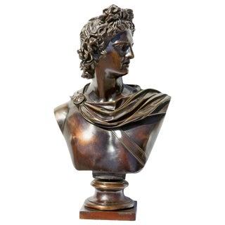 19th Century Bronze Bust of Apollo Belvedere Grand Tour Sculpture For Sale