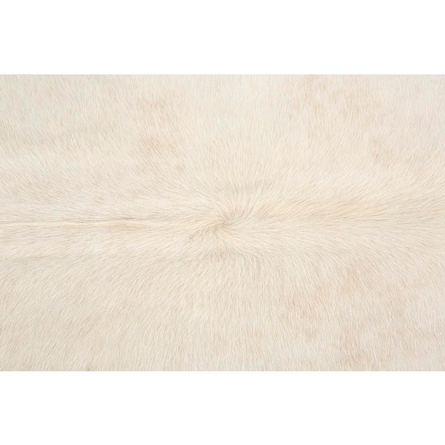 "This listing is for a light champagne cowhide from Brazil. It measures 91 ¼"" h x 84 ⅜"" w. We offer free 2-day shipping in..."