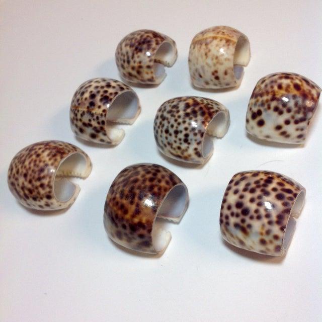 Natural Cheetah Shell Napkin Rings - Set of 8 - Image 4 of 6
