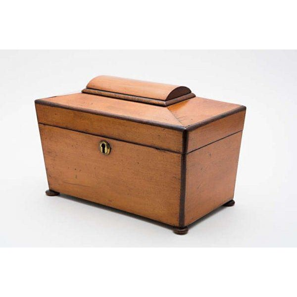 19th Century Satinwood Teacaddy For Sale - Image 4 of 11