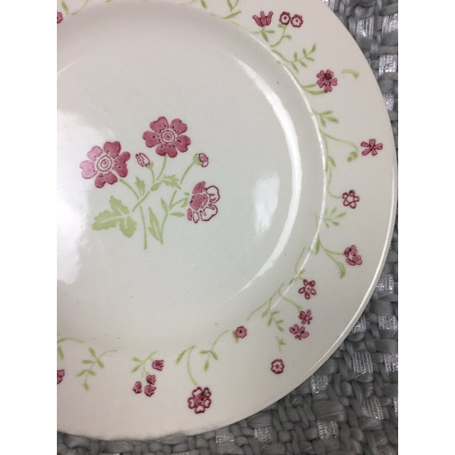 1950s Shabby Chic Mismatched Floral China Plates- Set of 4 For Sale - Image 5 of 13