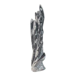 Organic Modern Orthoceras Fossil Sculpture For Sale