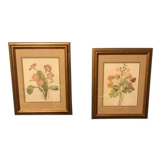 Vintage PJ Redoute Botanical Framed Prints - A Pair