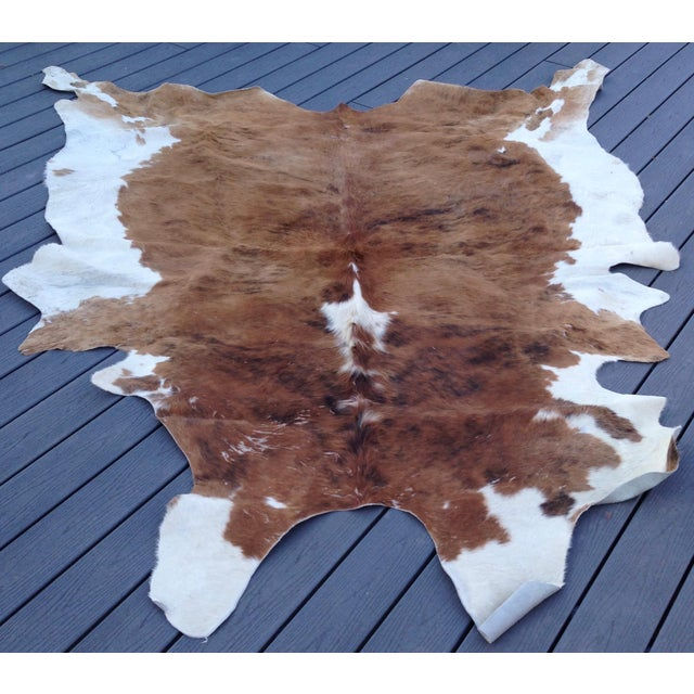 Brazillian Chestnut and Mahogany XL Cow Hide Rug For Sale In San Francisco - Image 6 of 6
