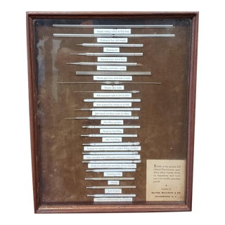 C. 1910 Becton, Dickinson & Co. Clinical Thermometer Operations Drug Store Display For Sale