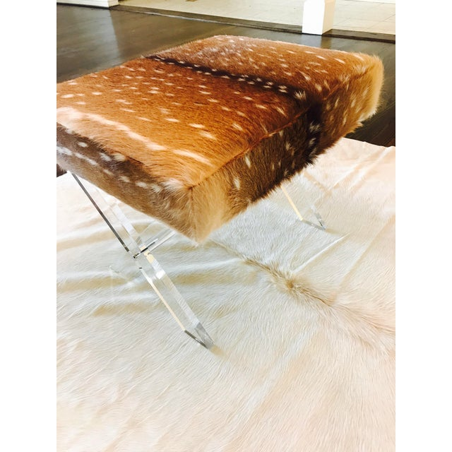 Axis Deer Lucite X Stool - Image 5 of 7