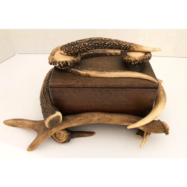 """Exceptional Black Forest Wood Box With Natural Antlers, c.1900-1940. Wood Box size without antlers is, 7.6"""" w by 5.5""""deep..."""