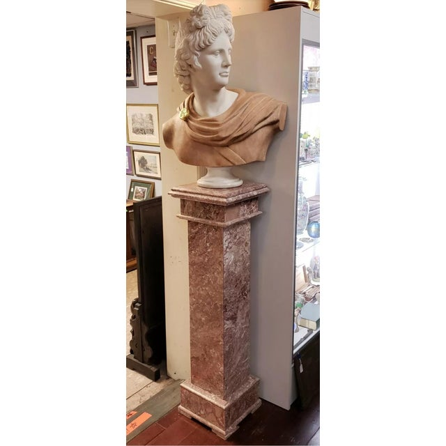 Stone Italian Art Nouveau Carrara and Salmon Marble Apollo of Belvedere Bust on Rose Marble Pedestal For Sale - Image 7 of 7