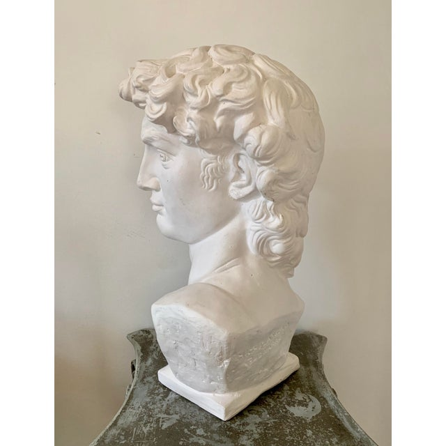 1990s 1990s Plaster Bust of David Sculpture For Sale - Image 5 of 12