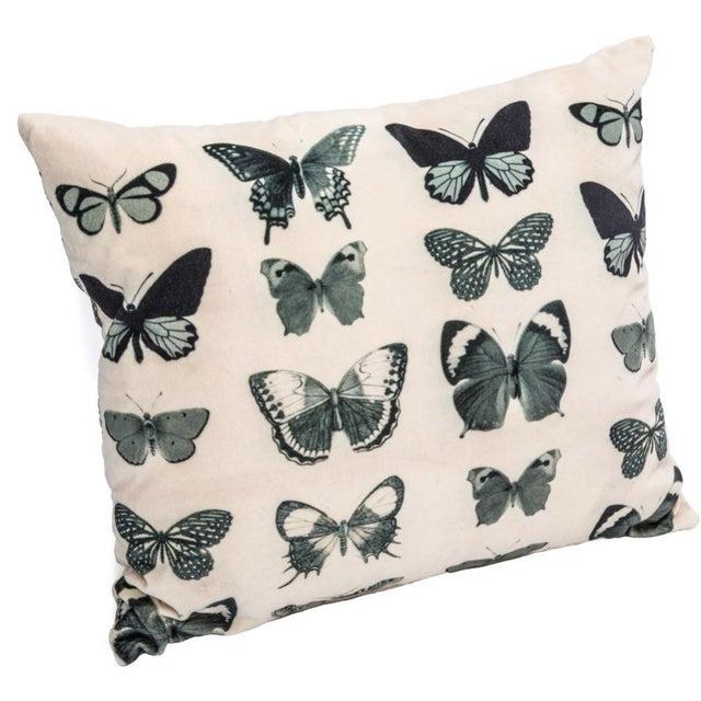 Ivory Velvet Butterfly Pillow - Image 1 of 2