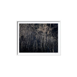 "Timothy Hogan ""Strand"" Original Framed Color Landscape Photograph, 2017 For Sale"