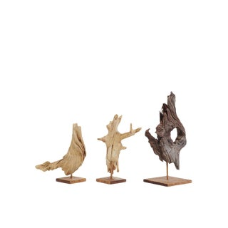 Driftwood Sculptures - Set of 3 For Sale