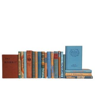 Midcentury Copper & Teal Novels, S/20 For Sale