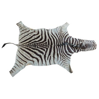 """Authentic Burchell Zebra Skin Rug With Head and Tail - 6'3"""" x 10'8"""""""