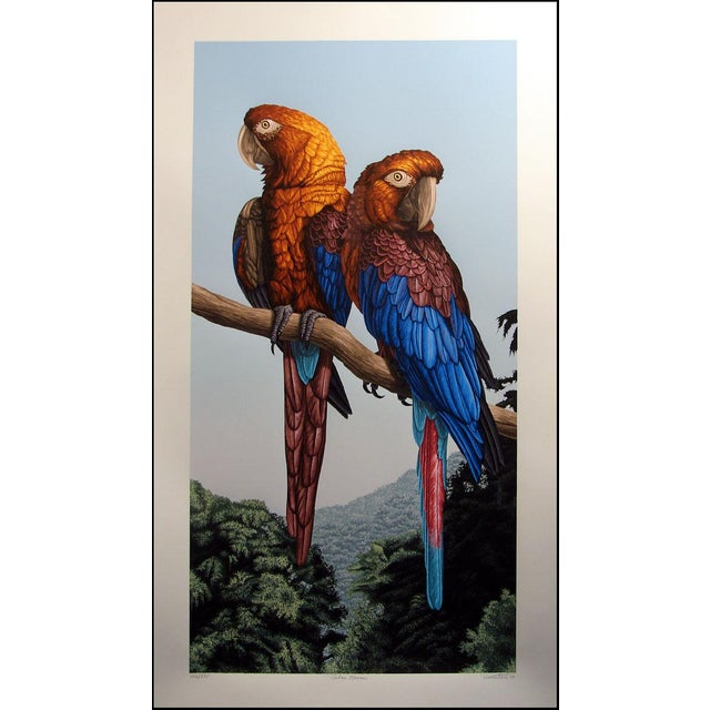 Original limited edition serigraph art print of 2 beautiful macaws on paper by American realist artist Dallas John. Hand...