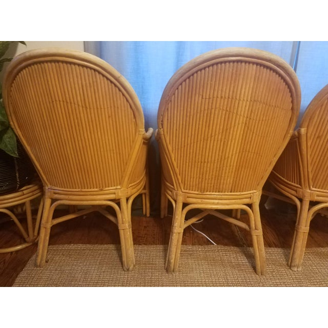 Palm Beach Pencil Reed Rattan Dining Chairs - Set of 4 For Sale - Image 5 of 10