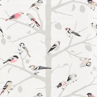 Sample - Schumacher A-Twitter Wallpaper in Blush For Sale