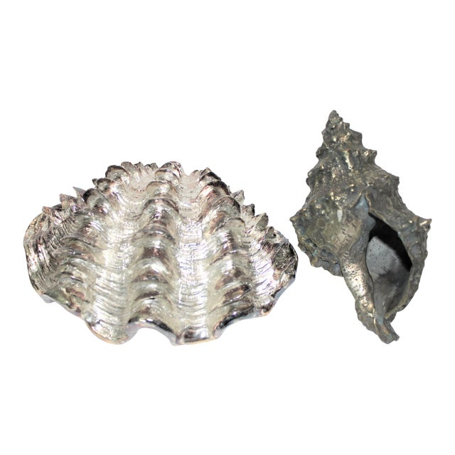 Shell Sculptures Ribbed Clam and Conch - a Set of 2 For Sale