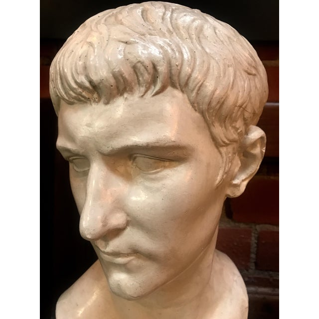 1970s Bust of Ottaviano Augusto, Roman Emperor, Plaster Portrait, Copy in Scale 1/1 For Sale - Image 5 of 7
