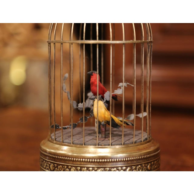 French 19th Century French Automaton Brass Cage With Two Singing Birds For Sale - Image 3 of 9