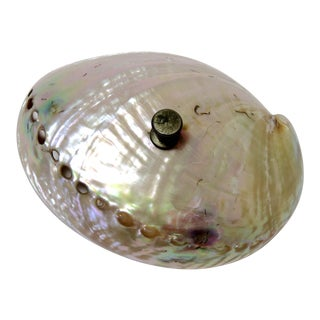 Antique Abalone Seashell Front Desk Bell For Sale