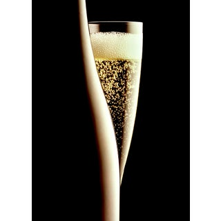 """""""Champagne Silhouette"""" Contemporary Photograph by John Manno (20""""x28"""") For Sale"""