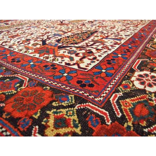 Persian Afshar Tribal Rug For Sale In San Francisco - Image 6 of 8