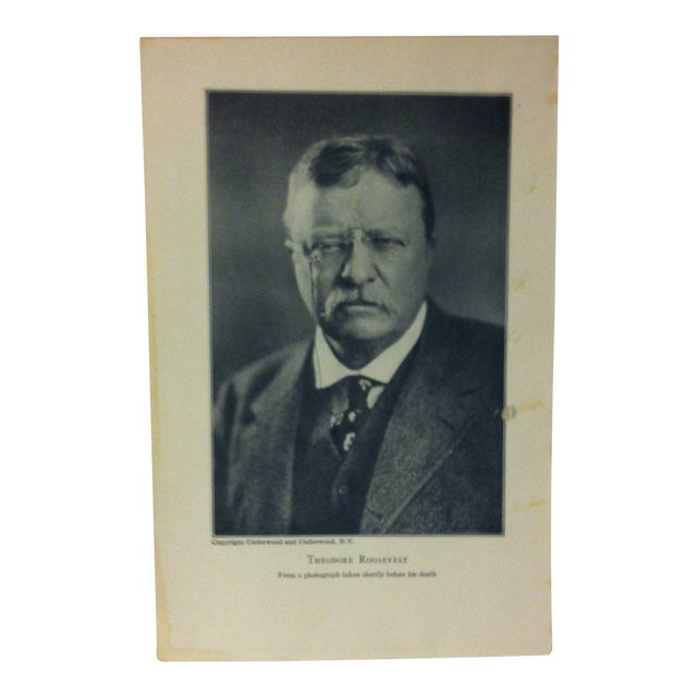 """1919 """"Theodore Roosevelt"""" Theodore Roosevelt Print on Paper For Sale"""