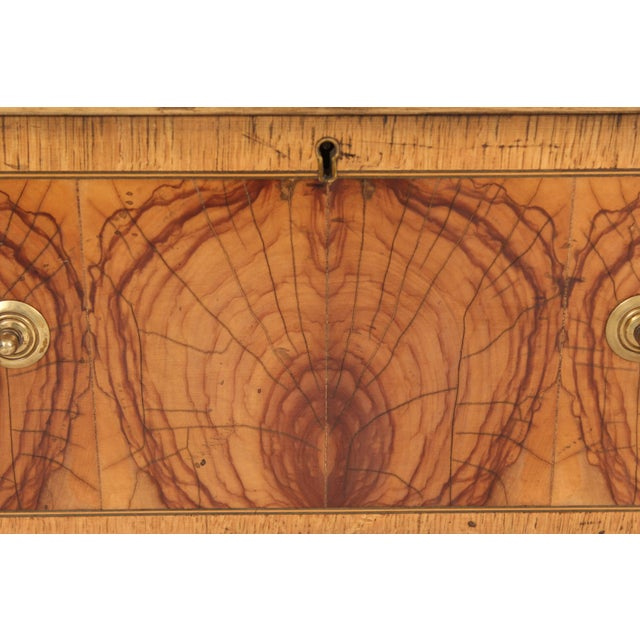 Brown Georgian Style Oyster Burl Chest of Drawers For Sale - Image 8 of 12