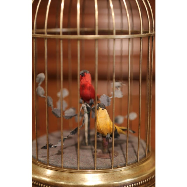 Late 19th Century 19th Century French Automaton Brass Cage With Two Singing Birds For Sale - Image 5 of 9
