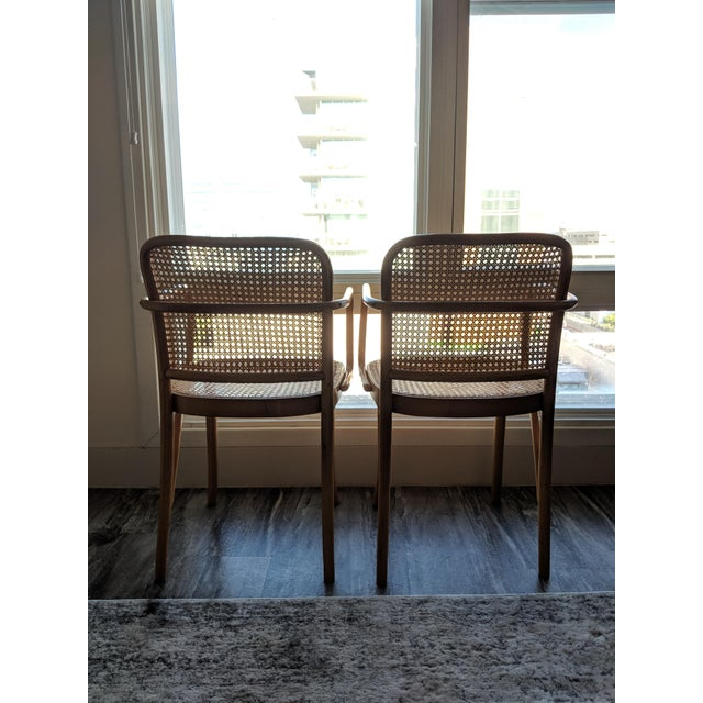 Tan Set of Mid-Century Modern Josef Hoffmann Prague Chairs For Sale - Image 8 of 10