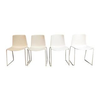 Pedrali #897 Tweet Chairs - Set of 4