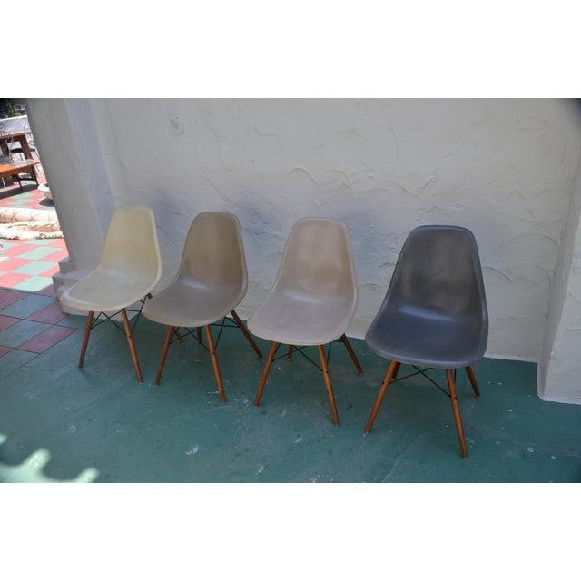 1958 Vintage Eames Molded Dowel-Leg Fiberglass Chairs - Set of 4 - Image 2 of 5