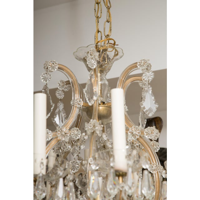 Vintage Maria Theresa Twelve-Light Chandelier For Sale In West Palm - Image 6 of 11