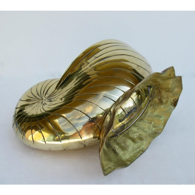 C.1970's Vintage Mid-Century Modern Brass Nautilus Shell Bottle Cooler For Sale - Image 11 of 13