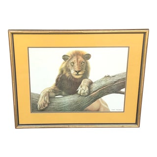 Vintage African Lion Print by Eric Tenney, Signed For Sale