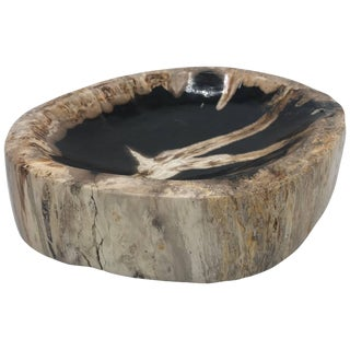 Petrified Wood Catchall Dish For Sale