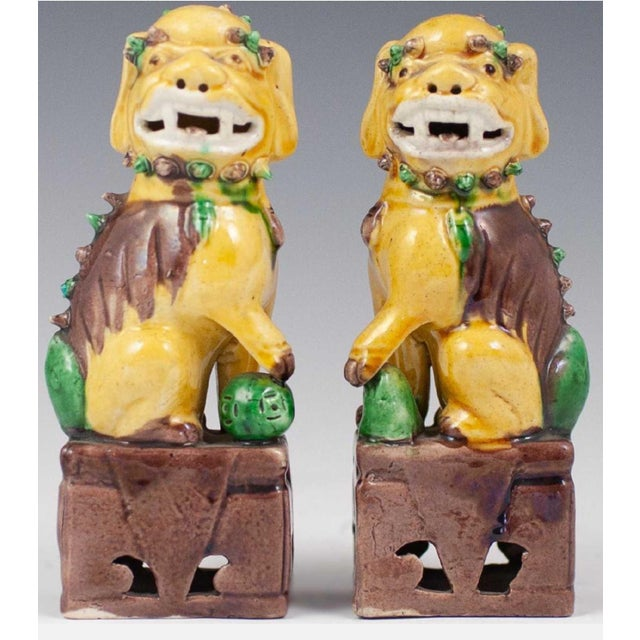 Ceramic 20th Century Chinese Sancai Glazed Porcelain Foo Dogs - a Pair For Sale - Image 7 of 7