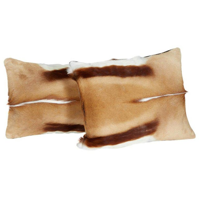 Tan Pair of Luxury Fur Throw Pillows in Exotic African Springbok For Sale - Image 8 of 8